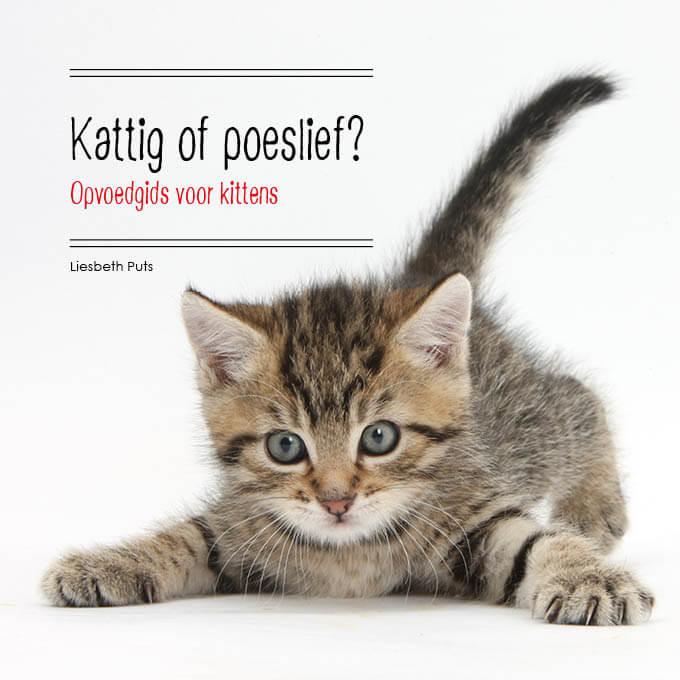 Liesbeth Puts - Kattig of poeslief opvoedgids voor kittens